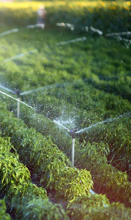 John And Floyd Lawn Care Services, Inc Irrigation System Repair