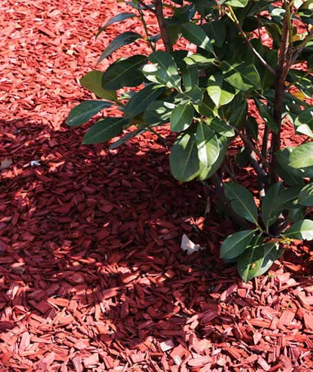 John And Floyd Lawn Care Services, Inc Mulching