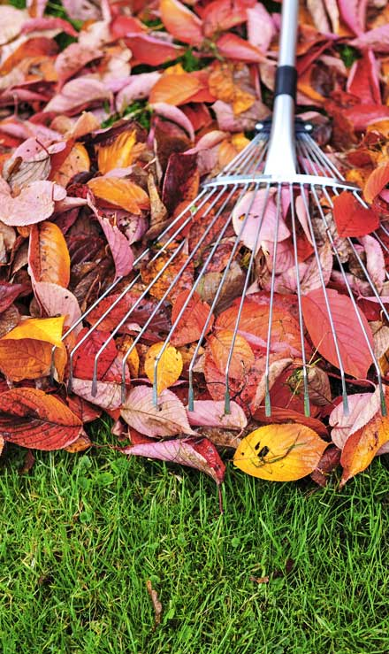 John And Floyd Lawn Care Services, Inc Fall Clean Up